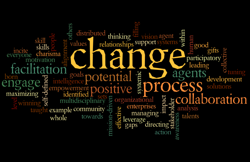 options for implementing leadership change Options for implementing a leadership change organizational leadership university of phoenix - online ldr 531 introduction in any organization, changing leadership can create more shifts and deeper changes within the company's walls.