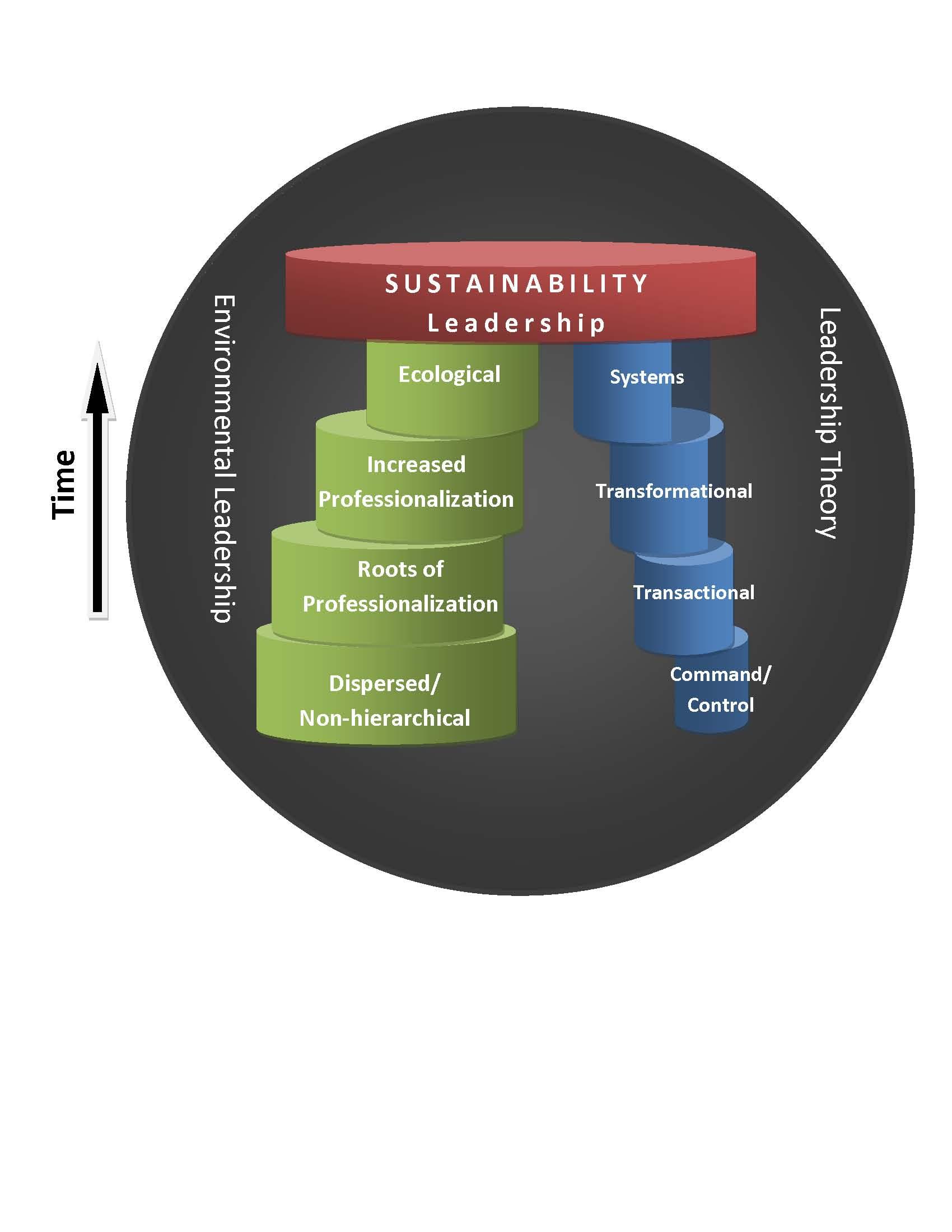 emerging leadership theories