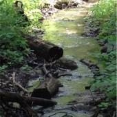 Figure 3b.  Stream  from Bridge