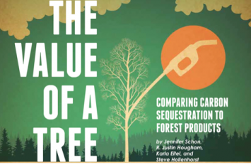 Image 4: National Science Teacher Association Science Scope article: The Value of a Tree article, March 2014