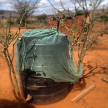 Photo 5: A water tank waiting to receive the rains. The owner covers it in an old mosquito net to keep out bugs and debris.