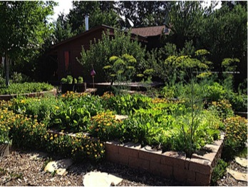 The author's gardens at her past home in Durango, Colorado.