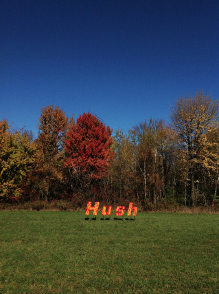 Hush -- Design Team -- Allison Witte + Amy Greenwald