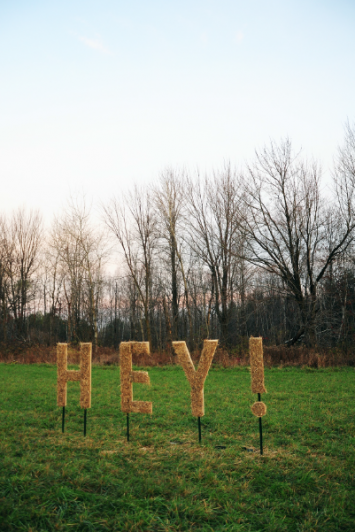 HEY! -- Design Team -- Shannon Lecher + Alex Gillis